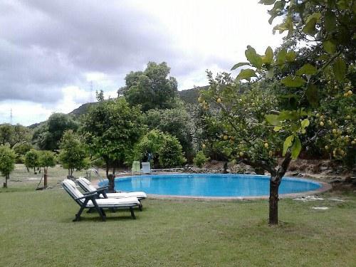 paisaje de piscina, árboles y sillas de casas rurales